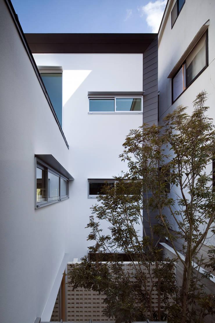庭:  井上久実設計室が手掛けた庭です。
