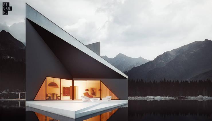 Dom Korona: styl , w kategorii Domy zaprojektowany przez 81.waw.pl