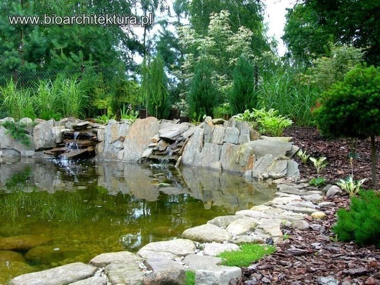 OGRÓD WODNY: styl , w kategorii Ogród zaprojektowany przez Bioarchitektura  - Ogrody, Krajobraz, Zieleń we wnętrzach,Egzotyczny