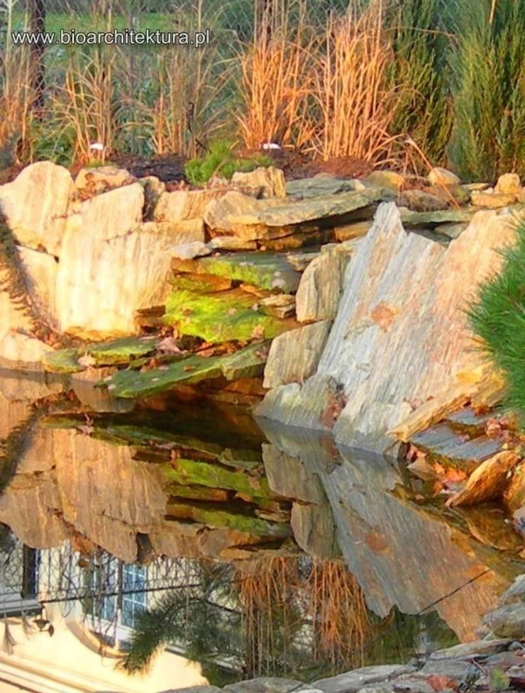 OGRÓD WODNY: styl , w kategorii Ogród zaprojektowany przez Bioarchitektura  - Ogrody, Krajobraz, Zieleń we wnętrzach,Rustykalny