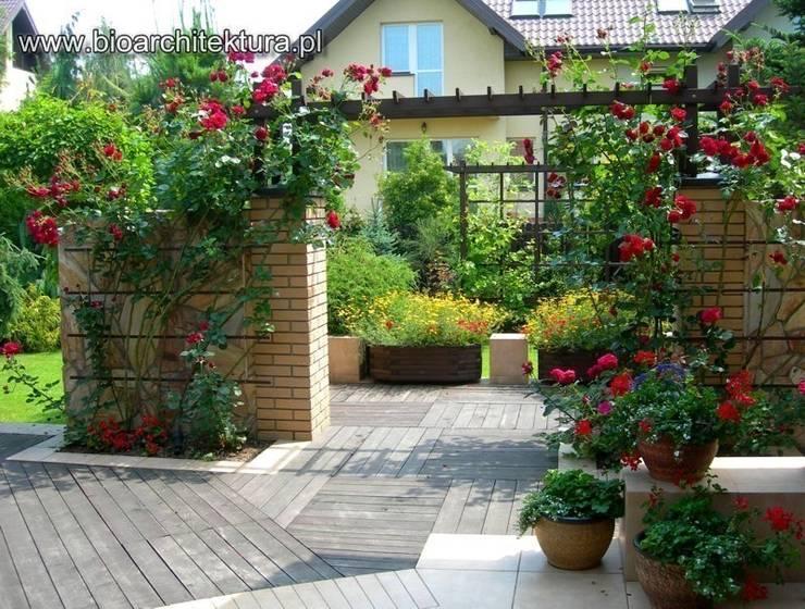 TARASY: styl , w kategorii Ogród zaprojektowany przez Bioarchitektura  - Ogrody, Krajobraz, Zieleń we wnętrzach