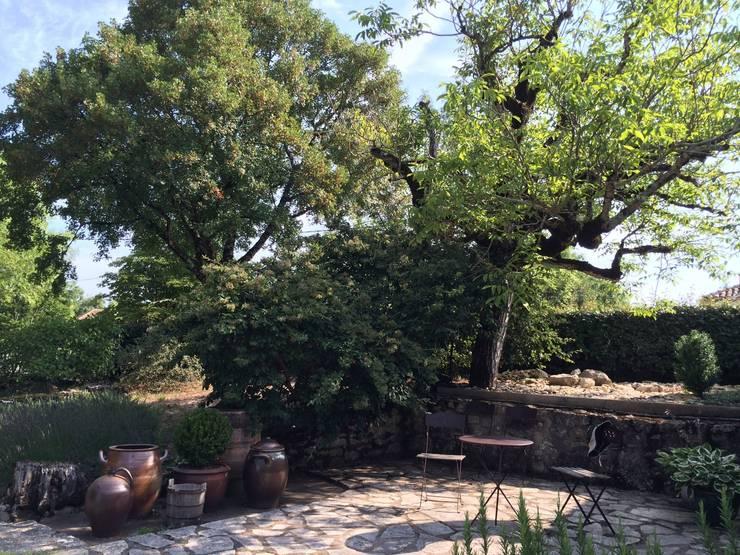 collection de pots: Jardin de style de stile Rural par INSIDE-DECO-TENDANCE