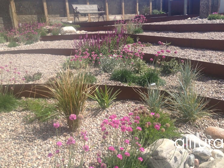 Vibrant Colours:  Garden by Alitura Landscape and Garden Design