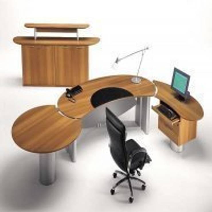 POLEN MUTFAK – OFİS MOBİLYALARI:  tarz Ofis Alanları & Mağazalar