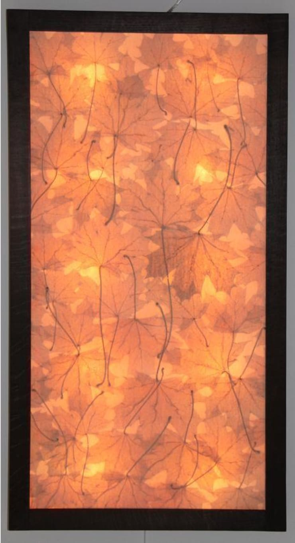 esdoorn display.:  Woonkamer door studio picus