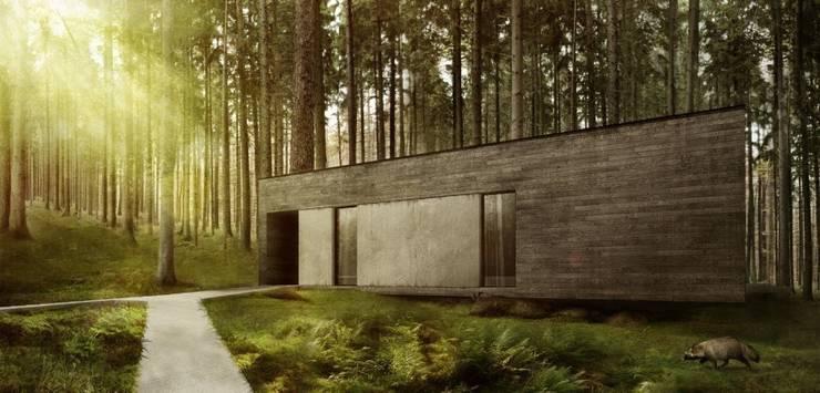 Dom w lesie: styl , w kategorii Domy zaprojektowany przez 081 architekci
