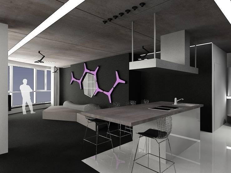 Кухня с видом на гостиную: Кухни в . Автор – (DZ)M Интеллектуальный Дизайн