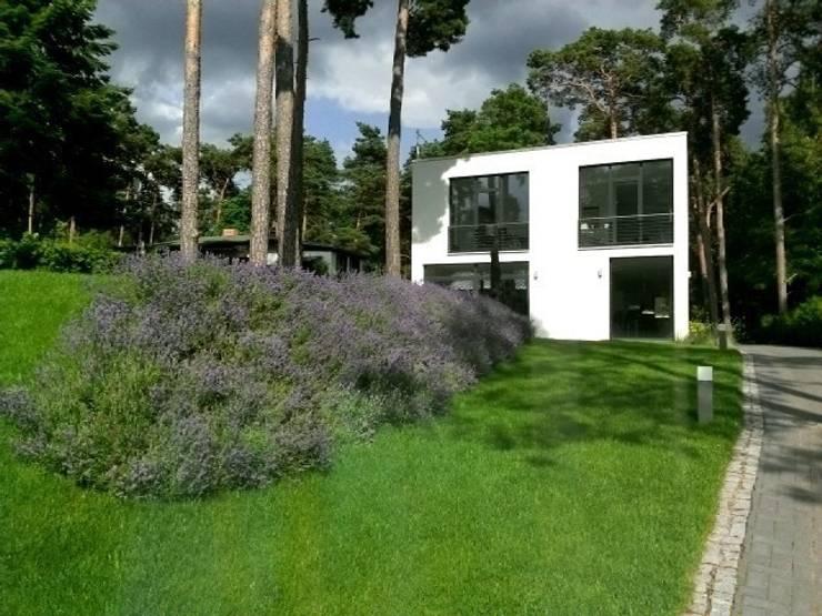 Bauhaus inmitten märkischer Kiefern:  Garten von homify
