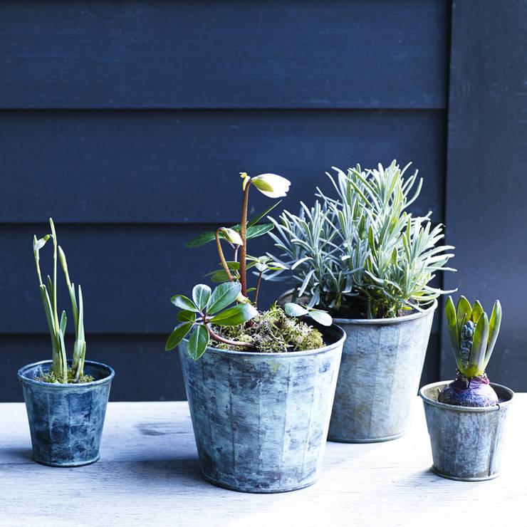 Brent Verdigris Plant Pot:  Garden  by Rowen & Wren