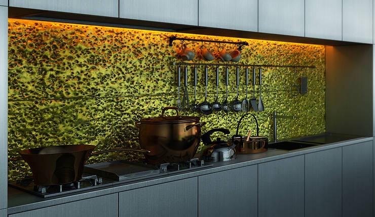 Дом-аквариум: Кухни в . Автор – ALEXANDER ZHIDKOV ARCHITECT