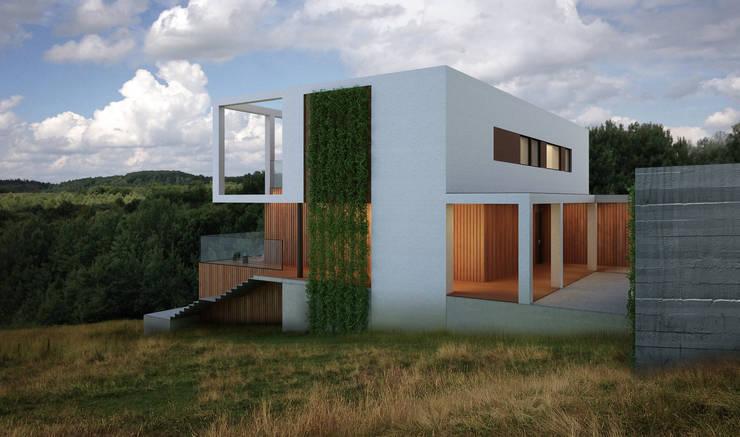 Дом во Львове: Дома в . Автор – ALEXANDER ZHIDKOV ARCHITECT