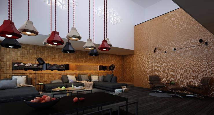 minimalistic Living room by ALEXANDER ZHIDKOV ARCHITECT
