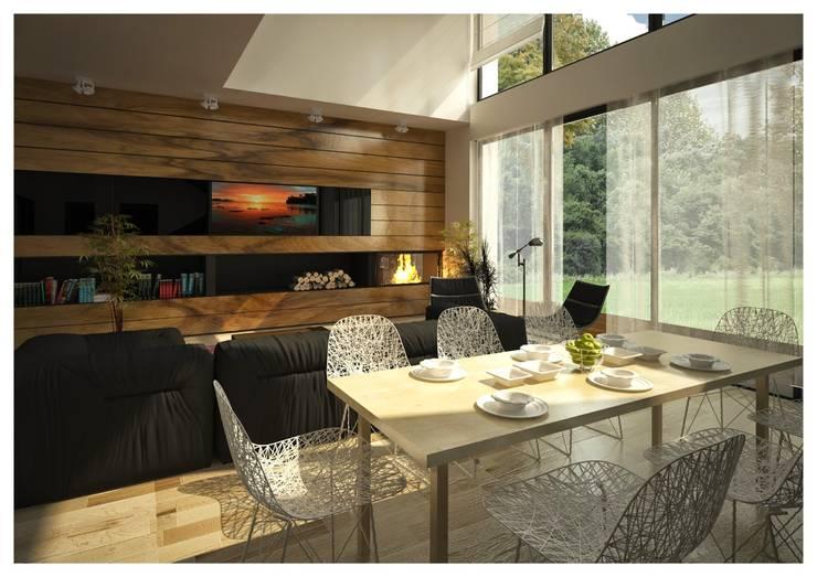 scandinavian Living room by ALEXANDER ZHIDKOV ARCHITECT