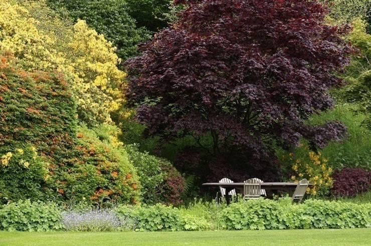 Outdoor Dining:  Garden by Rebecca Smith Garden Design