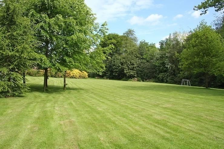 Parkland:  Garden by Rebecca Smith Garden Design