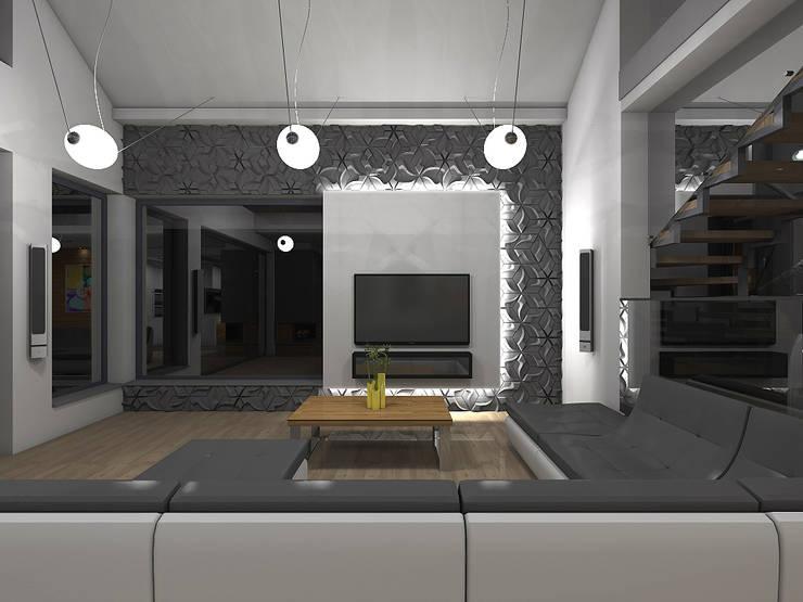 Wnętrze domu w Szałszy: styl , w kategorii Salon zaprojektowany przez STRUKTURA Łukasz Lewandowski