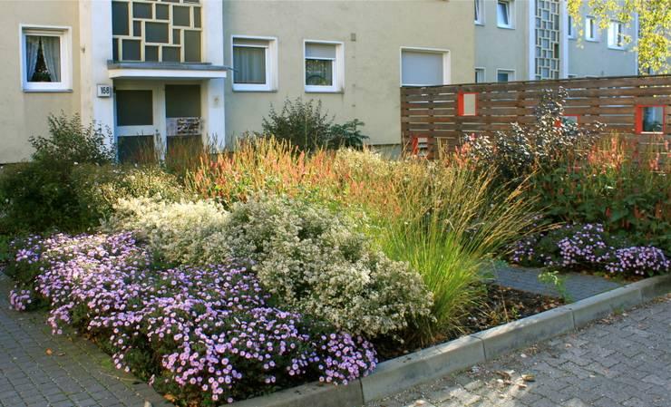 modern Garden by Büro Christian Meyer
