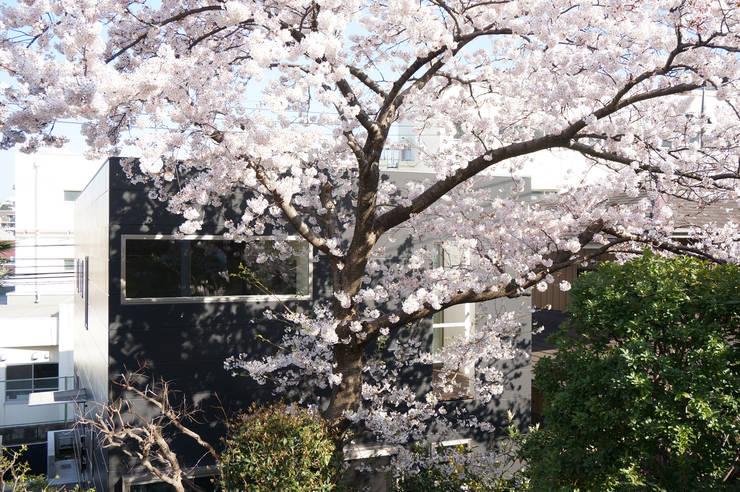 外観: 松岡淳建築設計事務所が手掛けた家です。