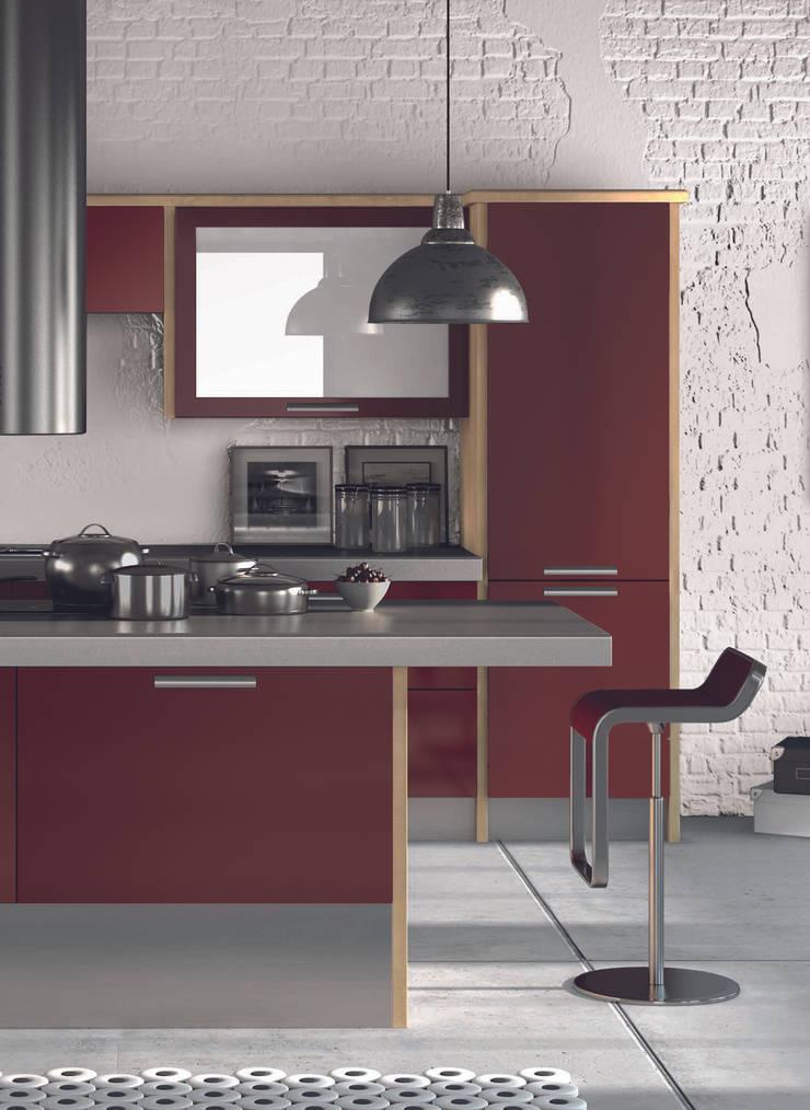 DM Design Burgundy Door Range :  Kitchen by DM Design