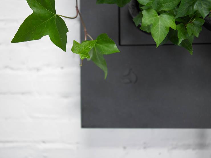 Florama czarna detal: styl , w kategorii Zieleń wewnątrz zaprojektowany przez FLORABO2