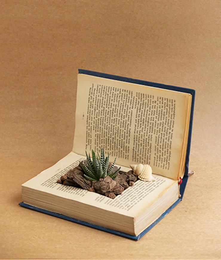 Terraqua Design – Kitap saksı:  tarz İç Dekorasyon