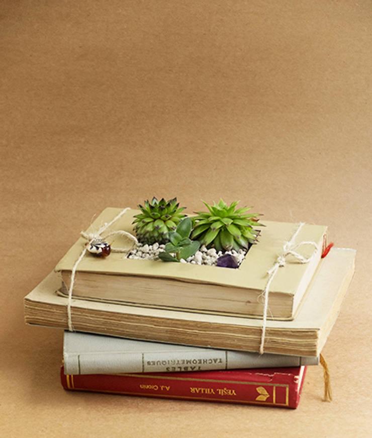 Terraqua Design – Kitap saksı:  tarz Balkon, Veranda & Teras