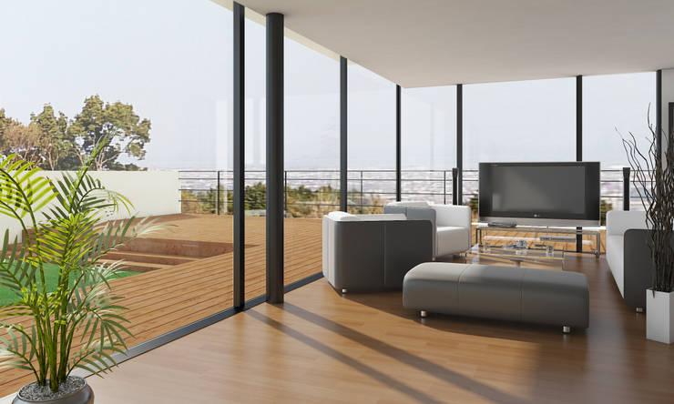 Living room by 河崎建築計画事務所, Modern