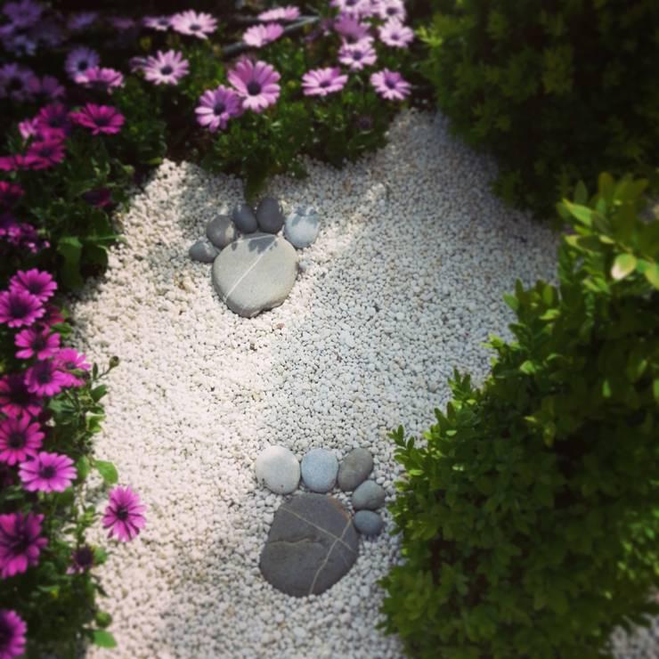 abelia peyzaj – bebek:  tarz Bahçe