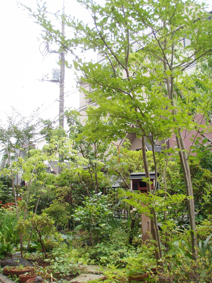 小さな池のある庭 | Adachi: jardinier Kirikuiが手掛けた庭です。