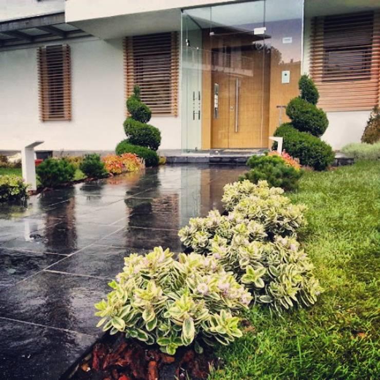 abelia peyzaj – abelia'dan karler:  tarz Bahçe