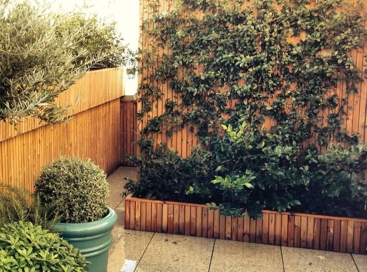Garden by a.s.paisajimo