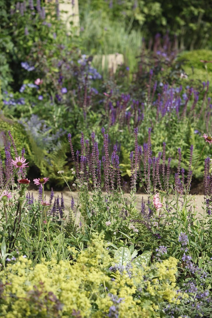 RHS Hampton Court Palace Garden Show 2010—The Combat Stress Therapeutic Garden:  Garden by Fi Boyle Garden Design, Classic