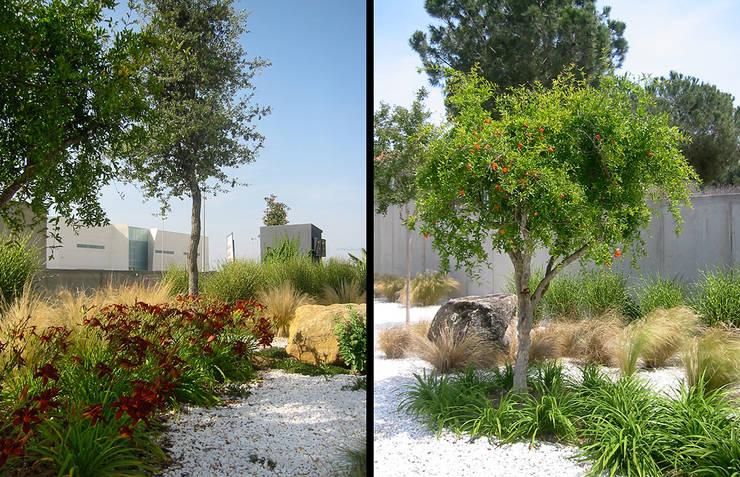Jardins  por Estudio de paisajismo 2R PAISAJE