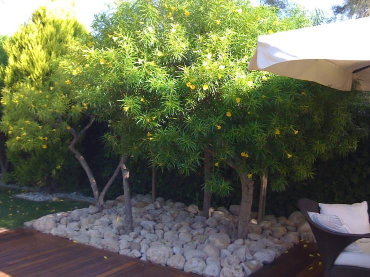 Gregal Wind: Jardín de estilo  de Estudio de paisajismo 2R PAISAJE
