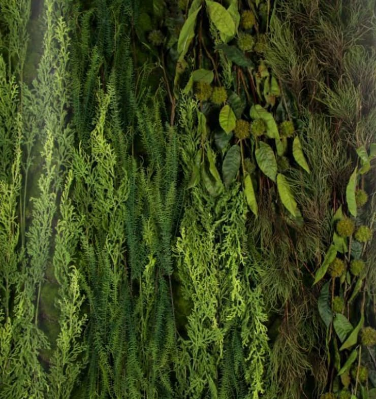 Green Wall by Materflora: country  by Materflora Lda., Country