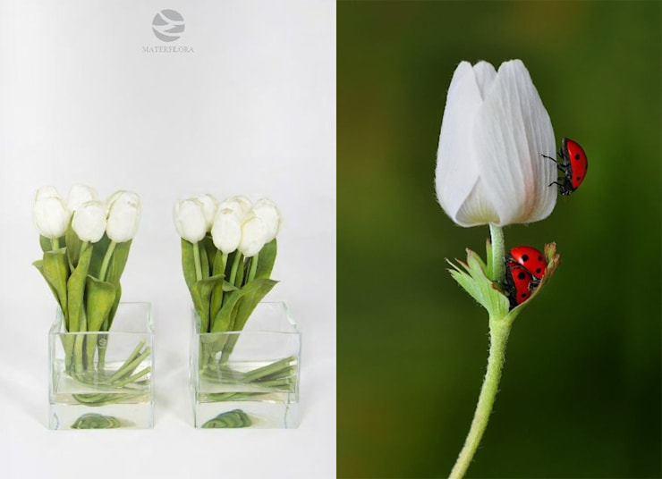 White Tulips arrangement: classic  by Materflora Lda., Classic