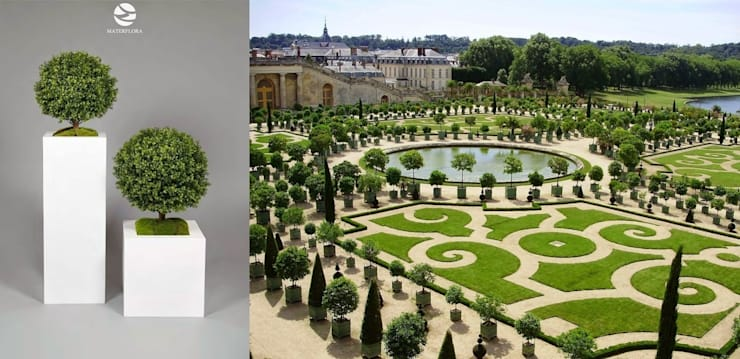 Versailles Style!: classic  by Materflora Lda., Classic