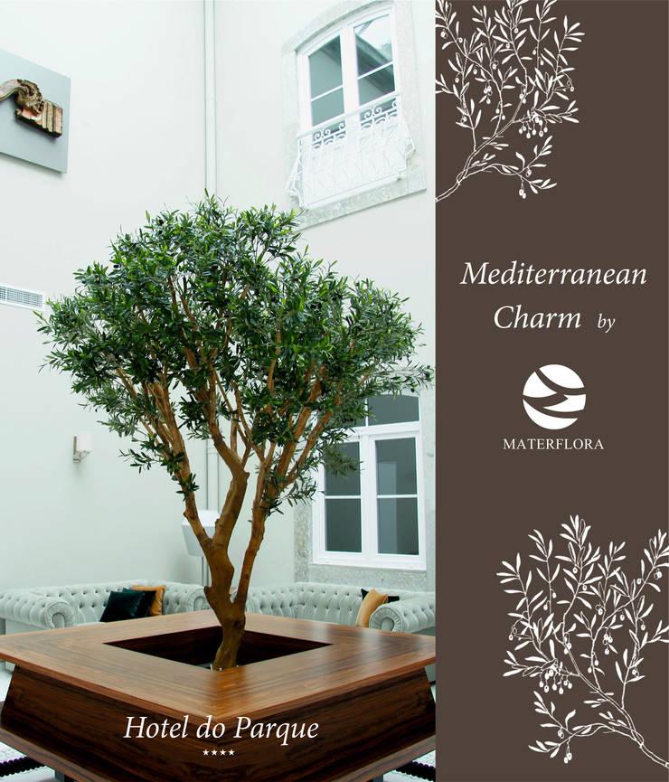 Mediterranean Charm:  Hotels by Materflora Lda., Mediterranean