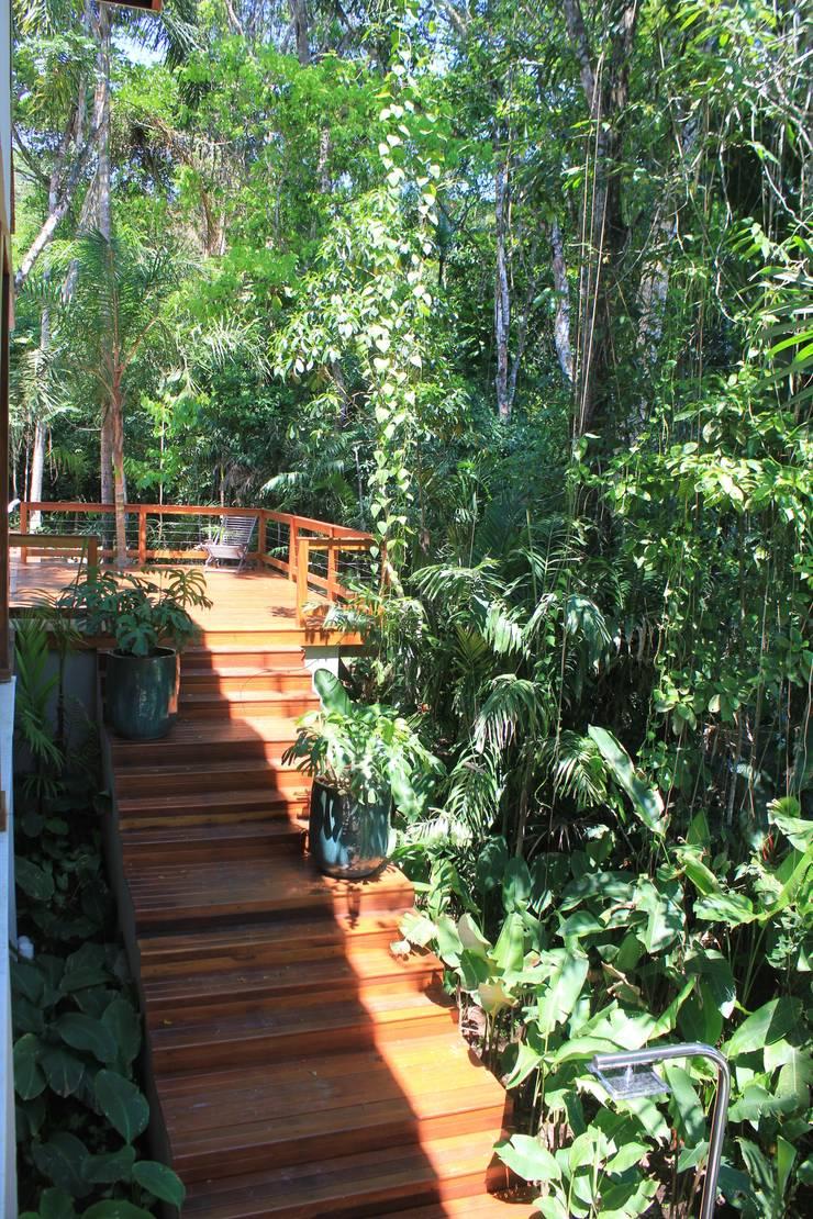 Juquey - Litoral São Paulo: Jardins tropicais por Mera Arquitetura Paisagistica