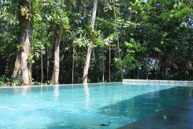 Juquey – Litoral São Paulo: Jardins tropicais por Mera Arquitetura Paisagistica