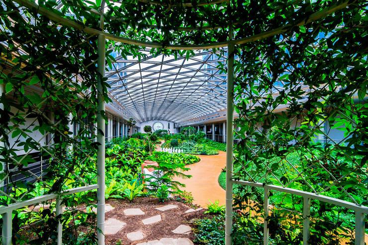 Diadema Club House: Зимние сады в . Автор – Belimov-Gushchin Andrey