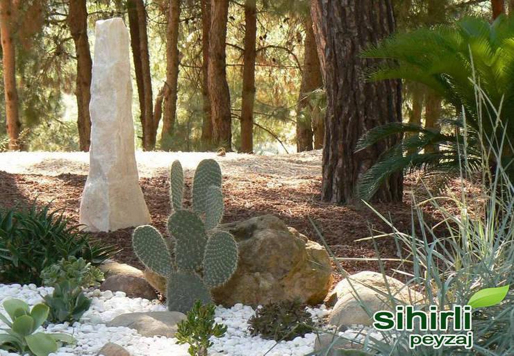 sihirlipeyzaj – sihirli peyzaj:  tarz Bahçe, Asyatik