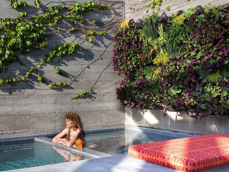 modułowe ogrody wertykalne – outdoor: styl , w kategorii Basen zaprojektowany przez rstudio