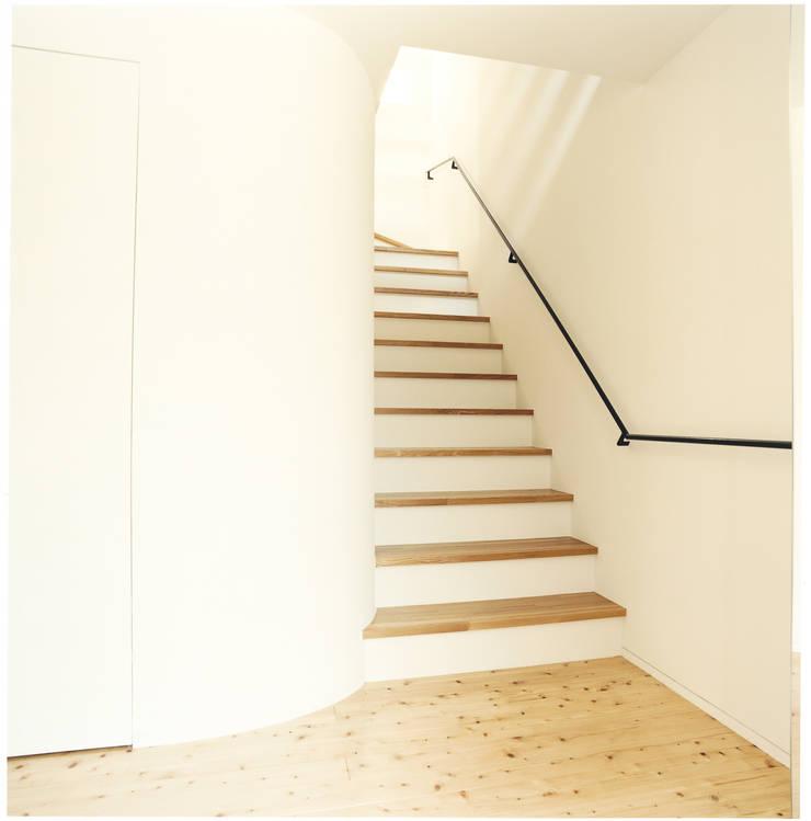 中村南一丁目住宅: 一級建築士事務所 艸の枕が手掛けた廊下 & 玄関です。