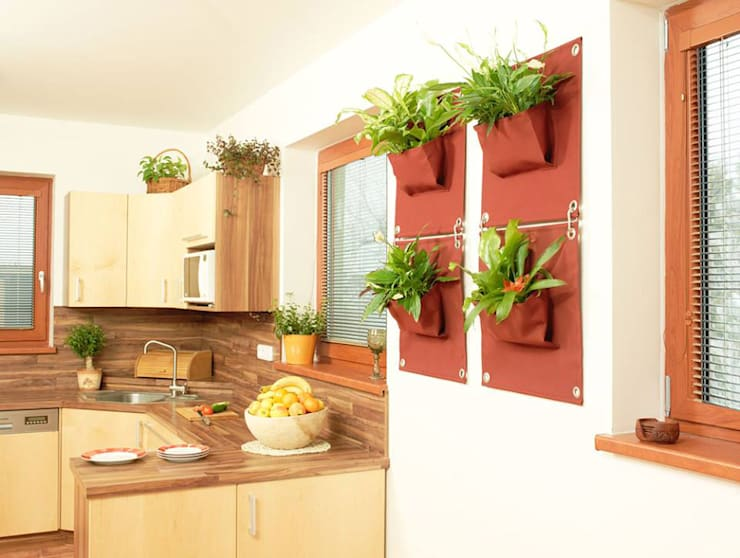Butik Bahçe Dikey Bahçe ve Peyzaj Tasarımları  – İç Mekan ve Dış Mekan Yeni Nesil Dikey Bahçeler:  tarz Bahçe