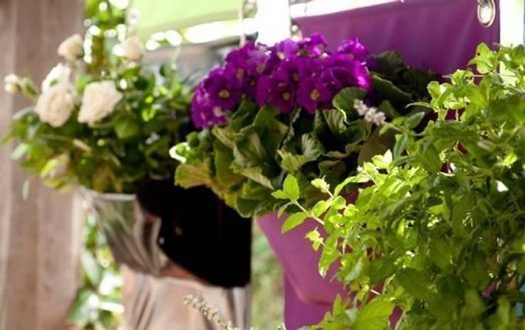Butik Bahçe Dikey Bahçe ve Peyzaj Tasarımları  – İç Dekorasyon Bitki Seçimi:  tarz İç Dekorasyon
