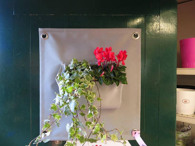 Butik Bahçe Dikey Bahçe ve Peyzaj Tasarımları  – Dikey Bahçe Saksıları:  tarz Balkon, Veranda & Teras