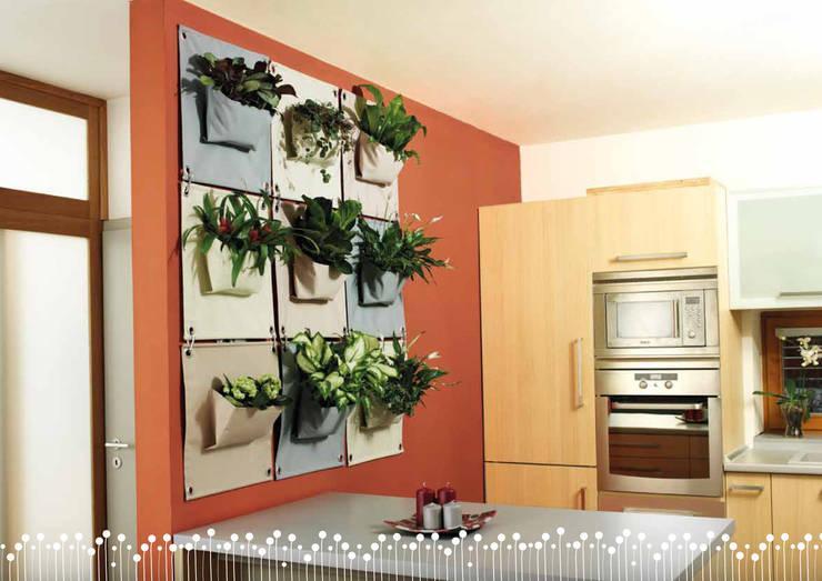 Butik Bahçe Dikey Bahçe ve Peyzaj Tasarımları  – İç Mekan Dikey Bahçeler:  tarz Duvar & Zemin