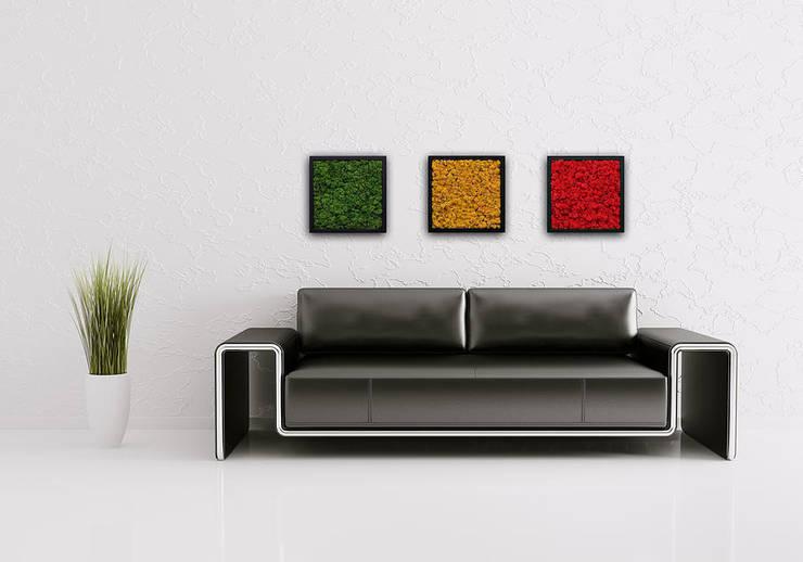 Butik Bahçe Dikey Bahçe ve Peyzaj Tasarımları  – Ofis,Mağaza ve Evlerinizde Rengarenk Canlı Tablolar :  tarz , İskandinav