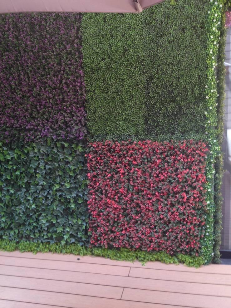 Muros verdes Artificiales Innover: Casas de estilo  por Grupo Boes